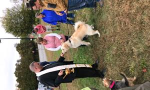 Blessing of the Pets Invokes the Spirit of St. Francis of Assisi