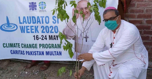 Laudato Si' Week 2020: Get Inspired, Because the Church Is Leading the Way