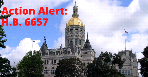 Action Alert: Human Trafficking Bill Before State Legislators