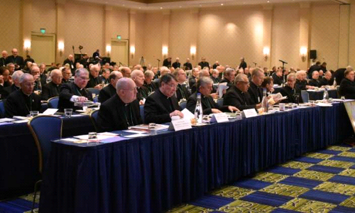 This Week at the U.S. Conference of Catholic Bishops