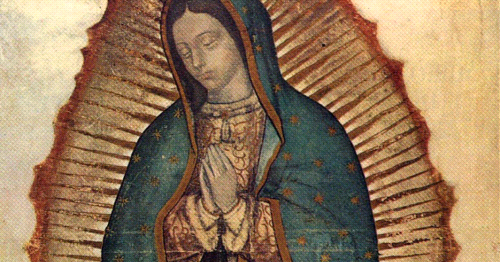 Comfort from Our Lady of Guadalupe